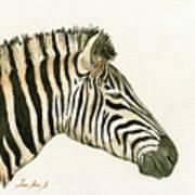 Zebra Head Study Painting Poster