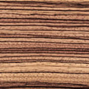 Zebrawood - Natural Abstract Poster