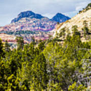 Zion Canyon National Park Utah Poster