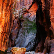 Zion Narrows With Boulder Poster