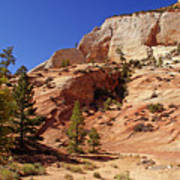 Zion Np Panorama Poster