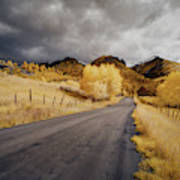 Back Road In Colorado 1 Poster