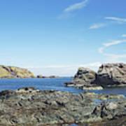 cliffs and coast at St. Abbs, Berwickshire Poster