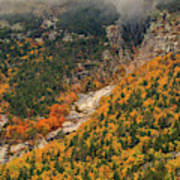 Crawford Notch Fall Foliage Poster