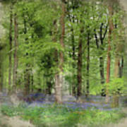 Digital Watercolor Painting Of Stunning Bluebell Forest Landscap Poster