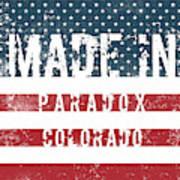 Made In Paradox, Colorado Poster