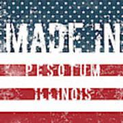 Made In Pesotum, Illinois Poster