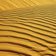 Sand Dune, Negev Desert, Israel Poster
