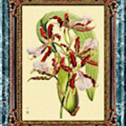 Vintage Orchid Antique Design Marble Blue-green  Poster