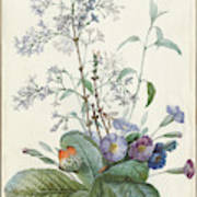 A Bouquet Of Flowers With Insects  Poster