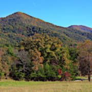 Autumn Colours In Great Smoky Mountains National Park Poster