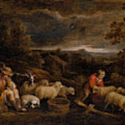 Shepherds And Sheep  Poster
