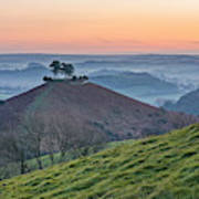 Colmers Hill - England Poster