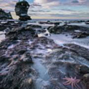 Motukiekie Beach - New Zealand Poster