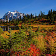 Autumn Colors With Mount Shuksan Poster