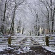 A Snowy Scene Poster
