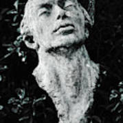 A Stone Bust In The Forest Poster