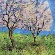 Almonds In Full Bloom Poster