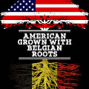 American Grown With Belgian Roots Poster