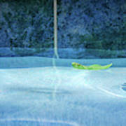 Aqua Agua And Leaf Poster