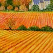 Autumn In French Vineyards Poster