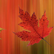 Autumn Spirit Panoramic Poster