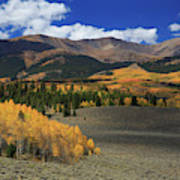 Autumn's Glory Poster