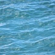 Bahamas Blue Poster