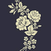 Beautiful Rose Flowers On The Dark Poster