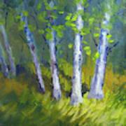 Birch Light Landscape Poster