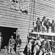 Black Men At Cotton Barn Poster