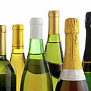 Bottles Of White Wine And Champagne Poster