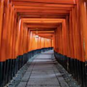 Bright Orange Torii Gates In Kyoto, Japan Poster
