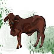 C Is For Cow Poster