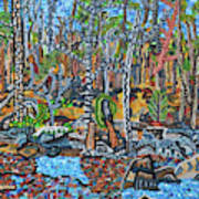 Cade's Land Trail Along The Eno Poster