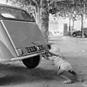 Car Break-down 1964 Poster