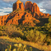 Cathedral Rock, Coconino National Poster