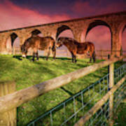 Cefn Viaduct Horses At Sunset Poster