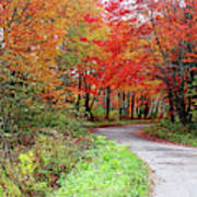 Chikanishing Road In Fall Poster