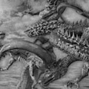 Chinese Dragons In Black And White Poster