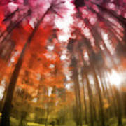 Colorful Trees Vii Poster