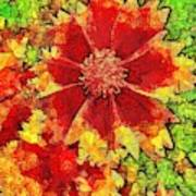 Coreopsis Abstract Poster