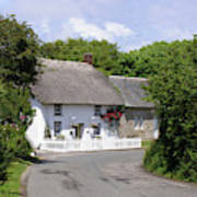Cornish Thatched Cottage Poster
