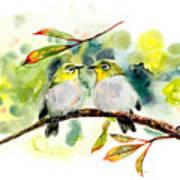 Couple Of Little Green Birdies Poster