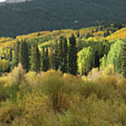 Crested Butte Colorado Fall Colors Panorama - 1 Poster