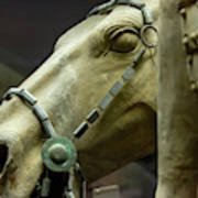Details Of Head Of Horse From Terra Cotta Warriors, Xian, China Poster