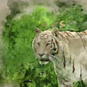 Digital Watercolor Painting Of Beautiful Portrait Image Of Hybri Poster