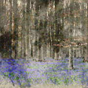 Digital Watercolor Painting Of Stunning Landscape Of Bluebell Fo Poster