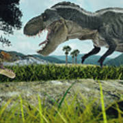 Dinosaur Scene Of The Two Dinosaurs Poster