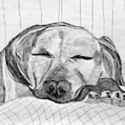 Django Napping Poster